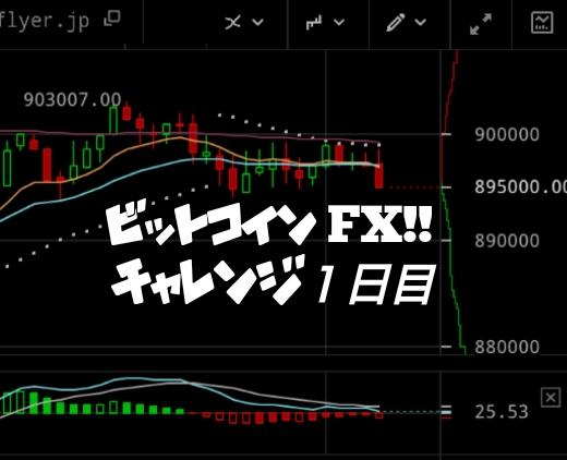 初心者ビットコインFXチャレンジ企画【1万円から万円へ】素人が出来るのか!?(1日目) | ライクプラス
