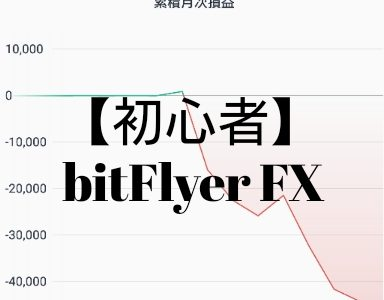 【BitcoinFX】初心者がビットコインFXで5万円負けて気がついた事・マイルールを決めて必ず守る