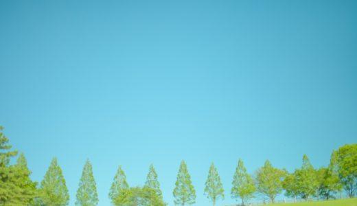 崖っぷちホテル!主演岩田剛典の過去の人気ドラマ・映画のフル動画を無料で見るには?